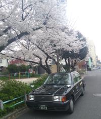 お花見タクシー